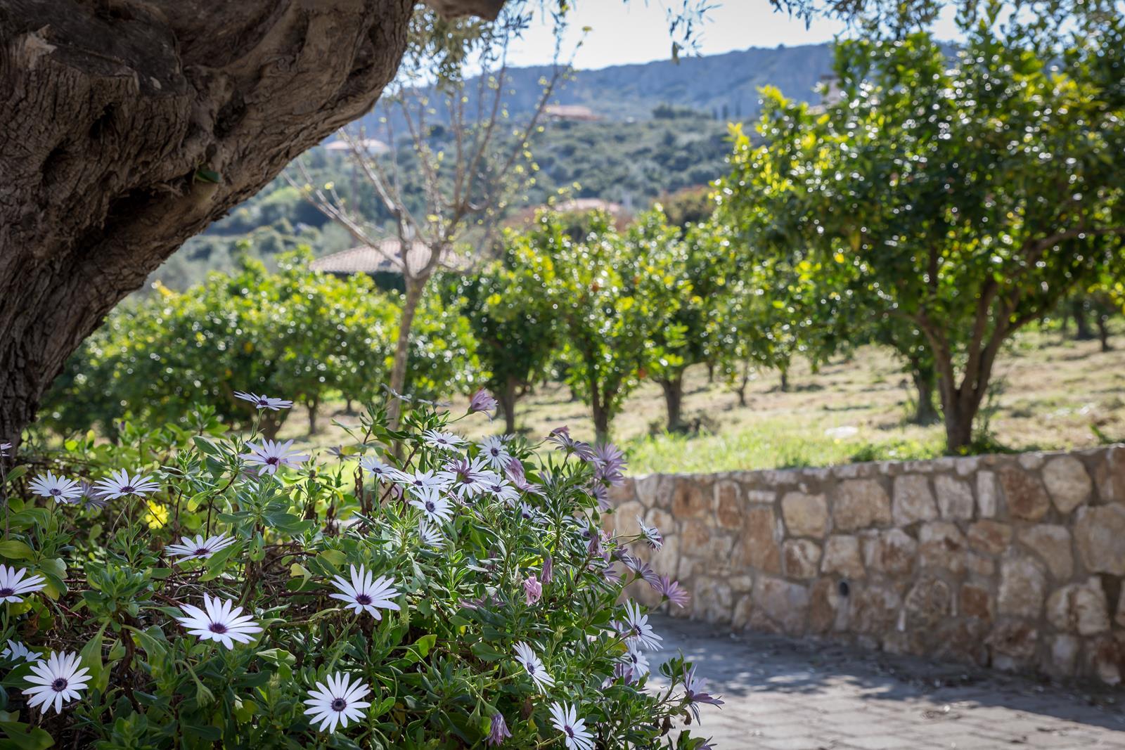 sights in Nafplio Greece - Klymeni Traditional Homes